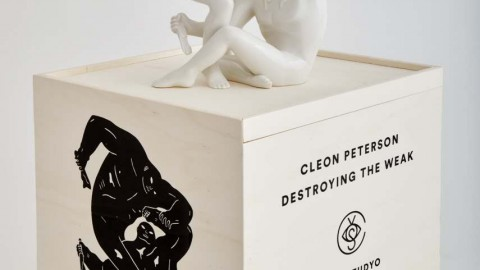 DESTROYING THE WEAK by CLEON PETERSON X CASE STUDYO