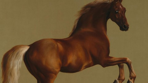 Whistlejacket – about 1762, George Stubbs