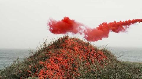 """IN DREAMS"" BY PETROS KOUBLIS"